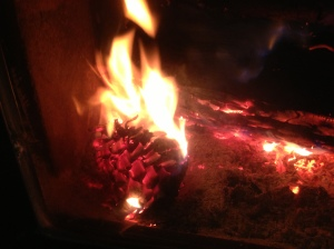 Love burning pine cones.