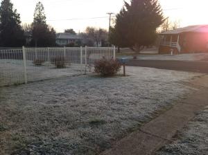 A frosty morning in Orange - it crackles underfoot...brrrr!